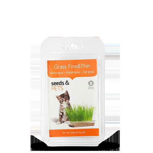 Grass Fine & Thin Kattengras