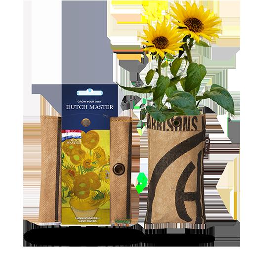 Zonnebloemen Van Gogh